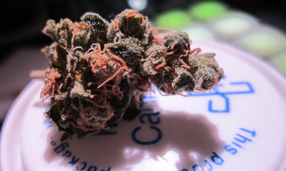 Medical Marijuana Maryland Dispensary Jobs