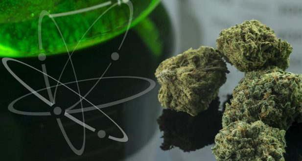 Advanced Cannabis Science